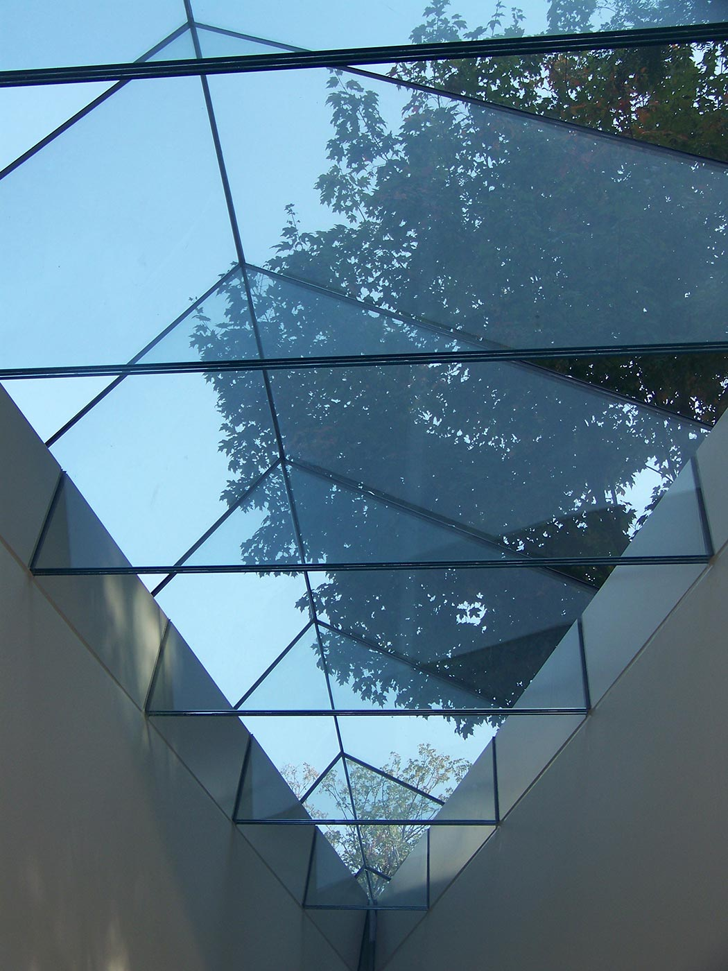 Harvard Gund Library Skylight