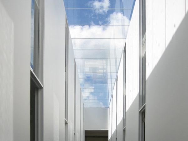 Custom Glass Monumental Skylights